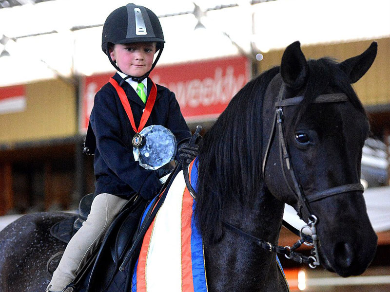Calela Finalis - Universal & Traditional Child's Riding Horse - Rider under 8 Years (Walk & Trot) and Universal and Traditional Child Rider Under 8 Years; Rider: Jannie Jacobsz jnr; Owner: Jacobsz Family, Davel