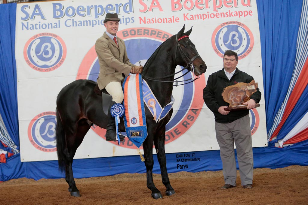 ROOIGRAS LE BEAUT  - T- ELITE 5 - CHAMPION 3-GAITED RIDING HORSE UNDER 5 YEARS<br>
