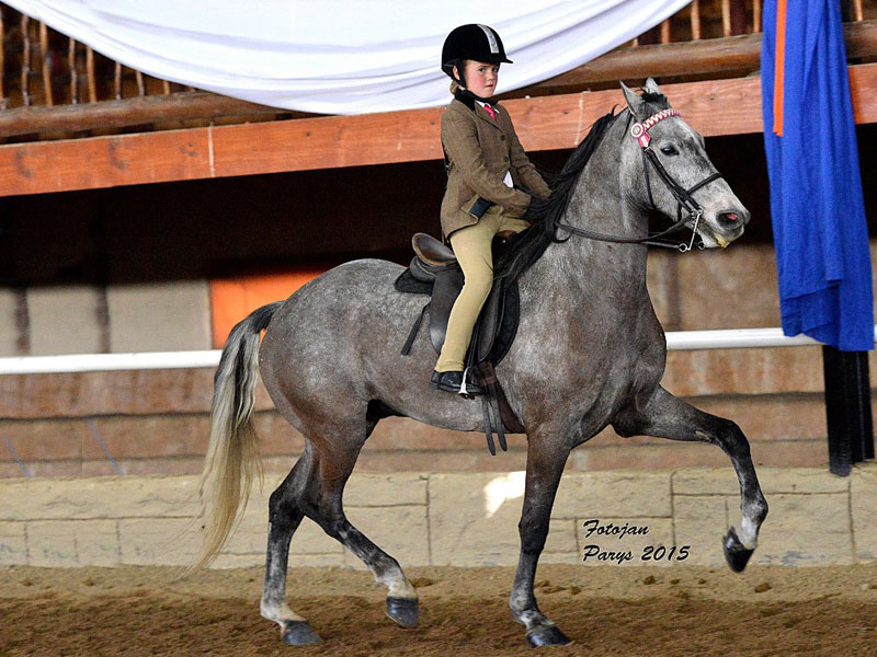 Simoné Jacobsz - Traditional Child Rider under 11 Years; Horse: Calela Okapi; Owner: Jacobsz Family, Davel